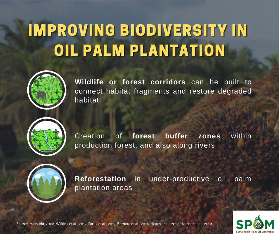 Sustainable plantation management